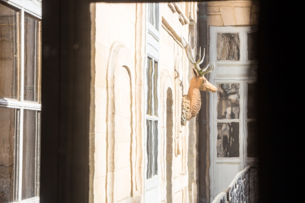 Chateau-Versailles-Details